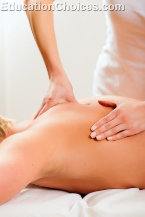 Different Types of Massage Therapy Supplies Schools